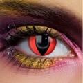猫眼(红底)